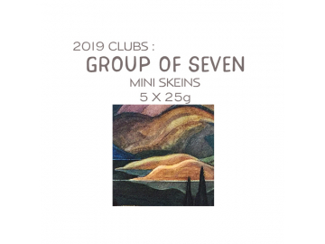 2019 Mini Skeins Group of Seven Subscription (Shipping included!)